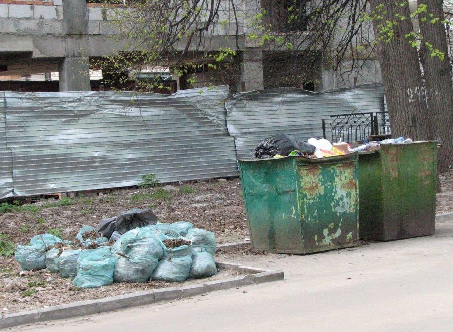 Более чем в пять раз снизилось число жалоб нижегородцев на мусор - фото 1