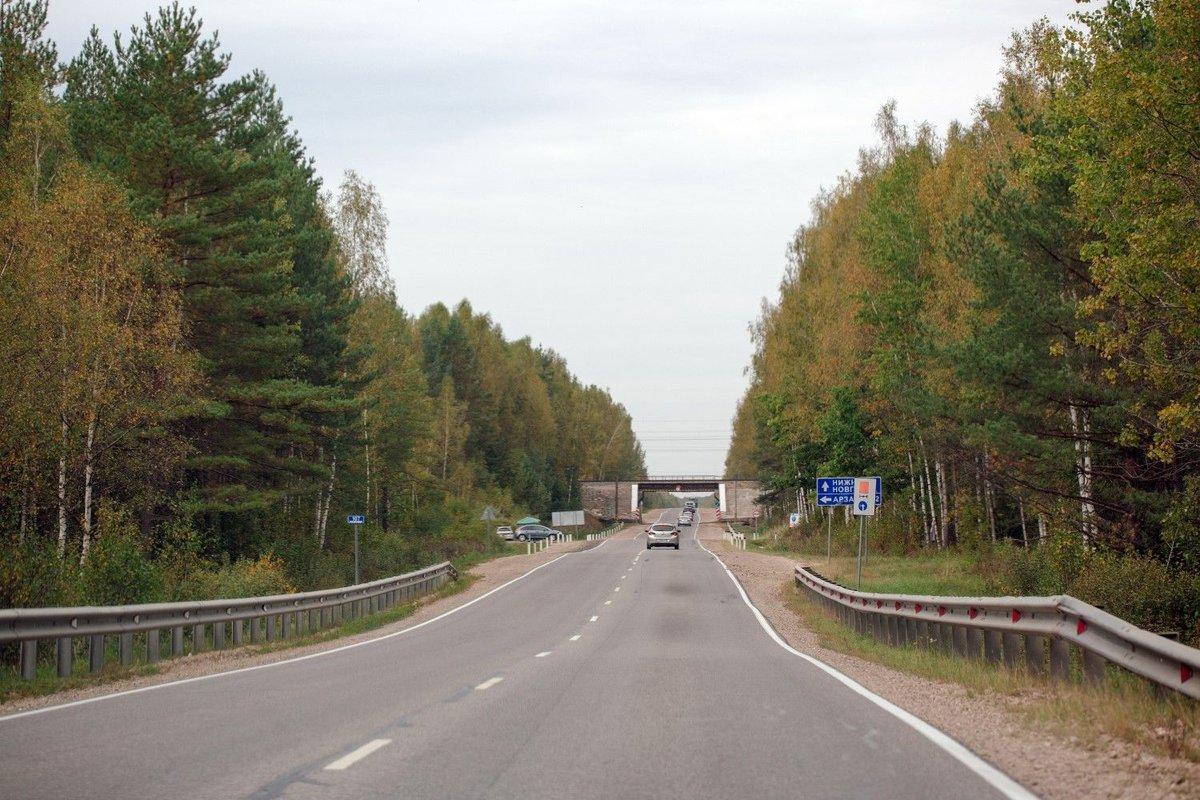13 километров защитного покрытия появится на трассе Нижний Новгород – Саратов - фото 1