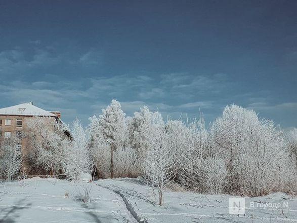 Как Нижний Новгород пережил аномально морозные дни  - фото 2