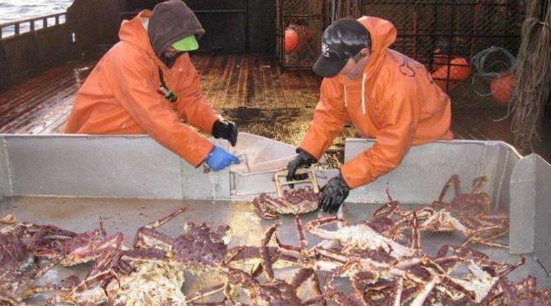 Варианты строительства судов для ловли крабов рассматривают на «Красном Сормове» - фото 1