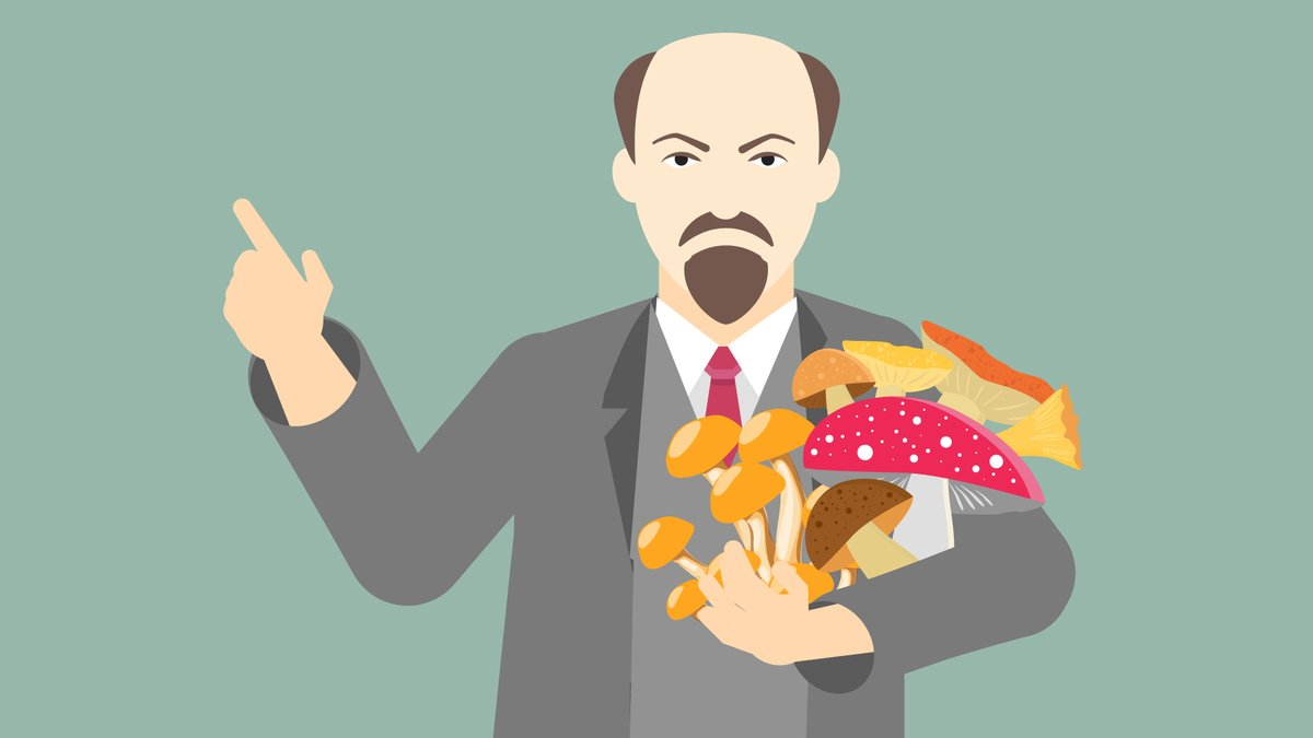 Можно ли есть дрожалку? Как Ленин стал грибом? Непростой тест для любителей тихой охоты