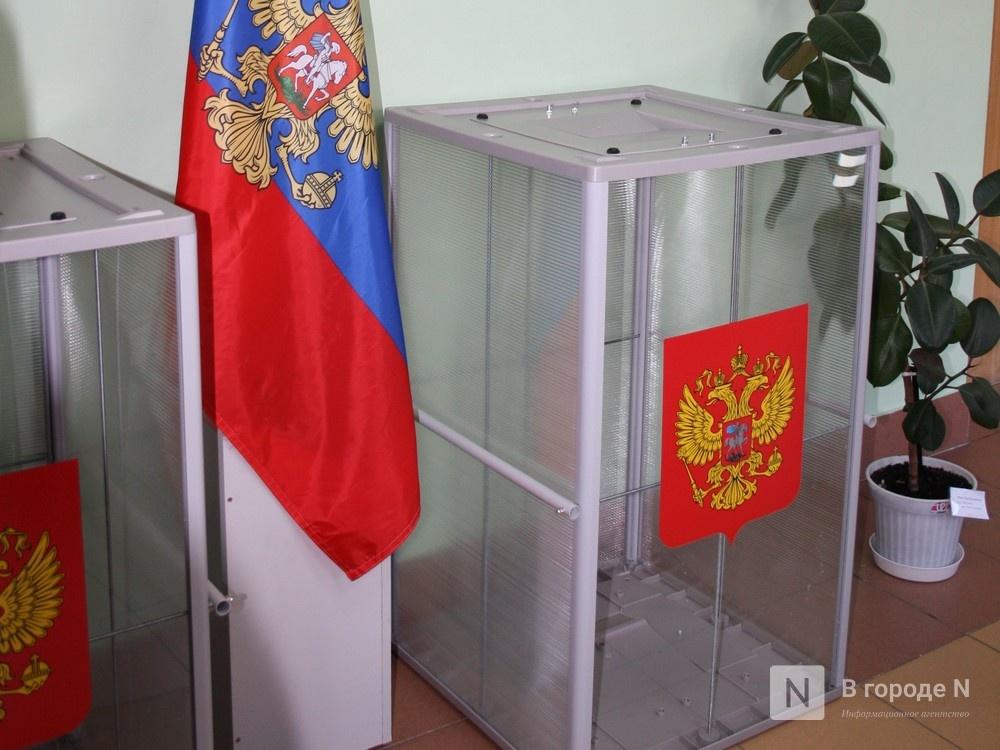 Нижегородский избирком принял решение о незаконности назначения некоторых наблюдателей - фото 1