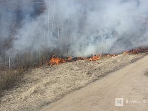 Десять лесных пожаров вспыхнуло в Нижегородской области в 2020 году