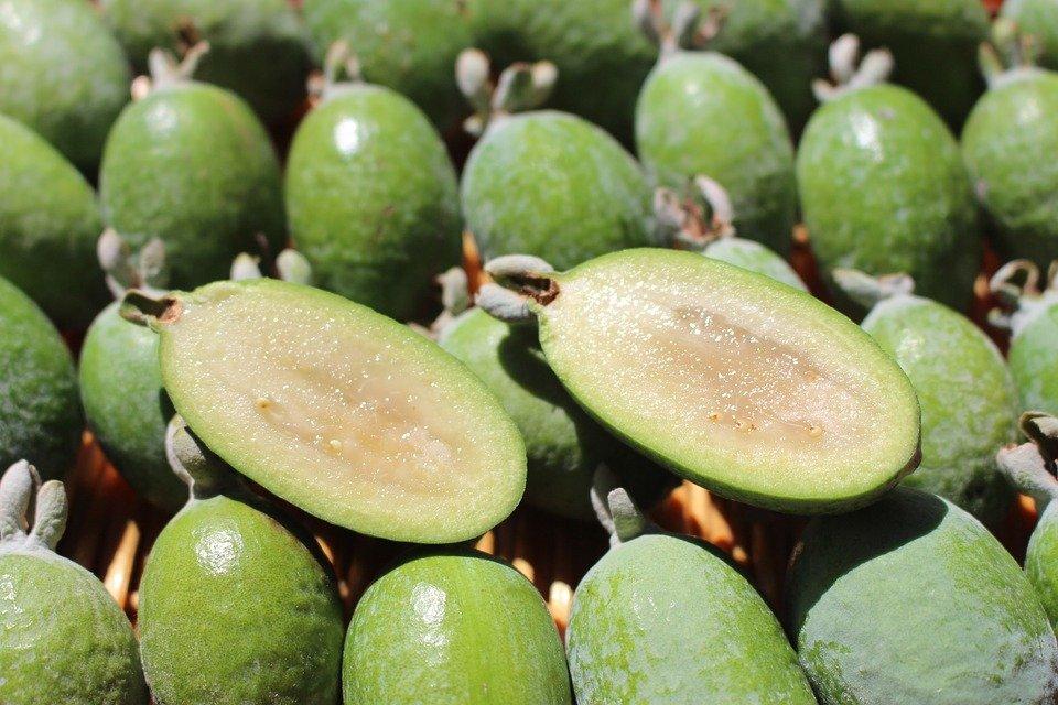 Фейхоа: что за фрукт и как его едят