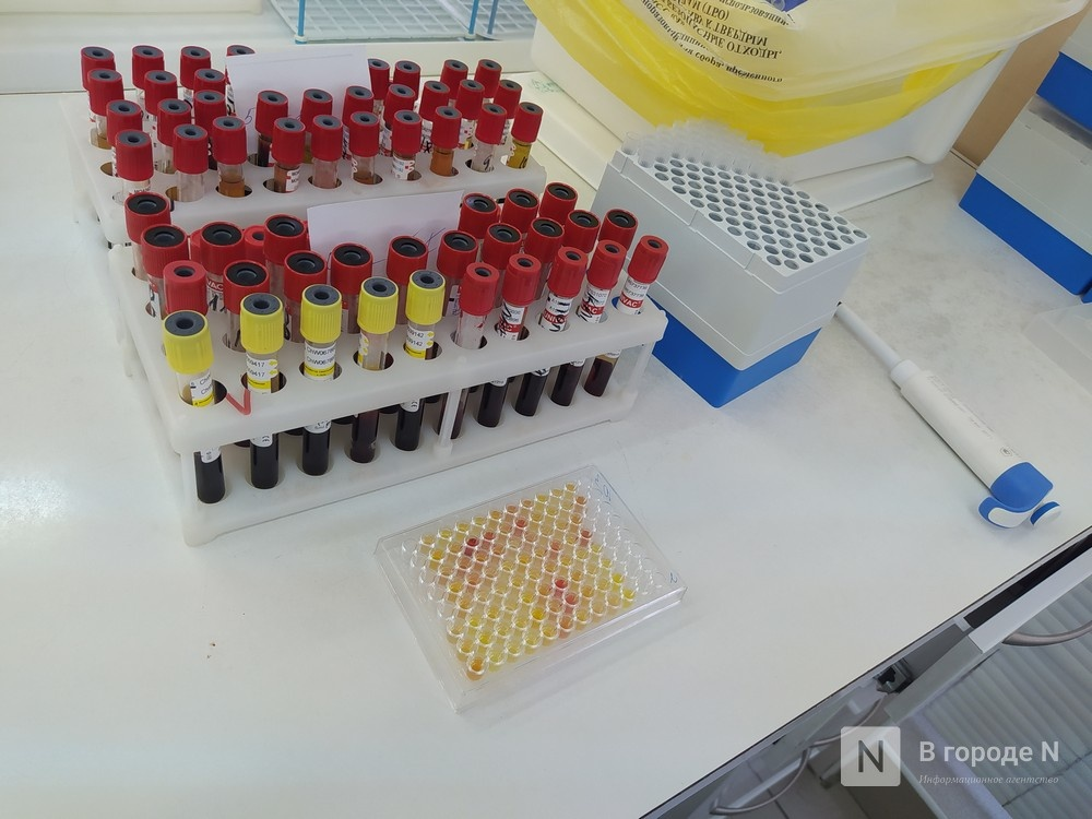 Главврач нижегородского центра крови рассказал, как жителей региона лечат от COVID-19 донорской плазмой - фото 1
