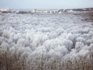 Метель надвигается на Нижегородскую область вечером 12 января
