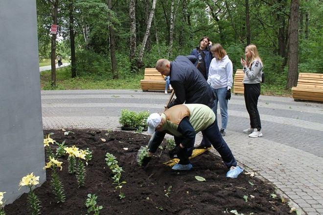 Более 500 цветов посадили в парке «Дубки» - фото 2