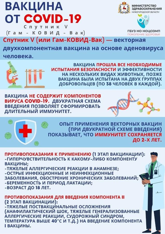 Нижегородский Минздрав назвал противопоказания к вакцинации от COVID-19 - фото 1