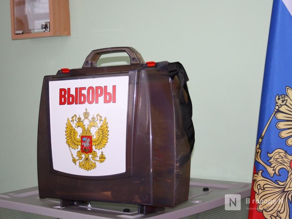 Более 20% составила явка избирателей Нижегородской области на 18:00 - фото 1