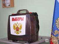 Нижегородские наблюдатели предотвратили попытку провокации на избирательном участке
