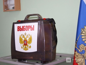 Явка избирателей Нижегородской области на 18:00 составила около 20%