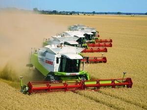 На 30% повысилась урожайность зерновых в Нижегородской области в 2020 году