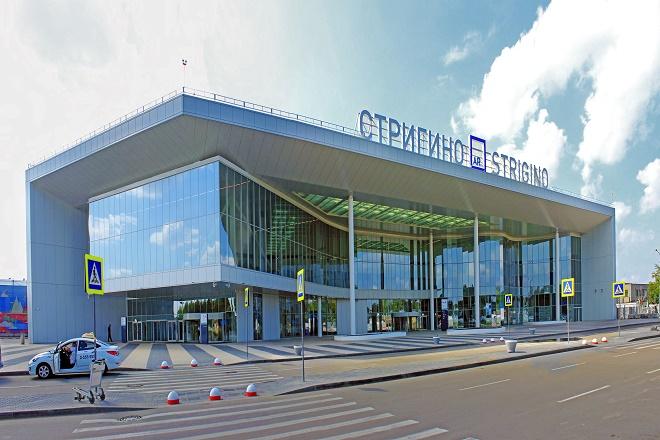 Нижегородский аэропорт направит неменее 1 млн руб. наотпугивание птиц