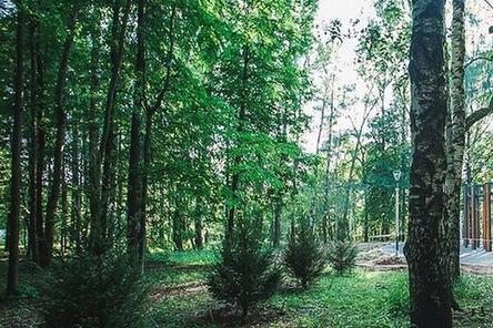 Посещать парк «Швейцария» можно будет сразу после 800-летия Нижнего Новгорода