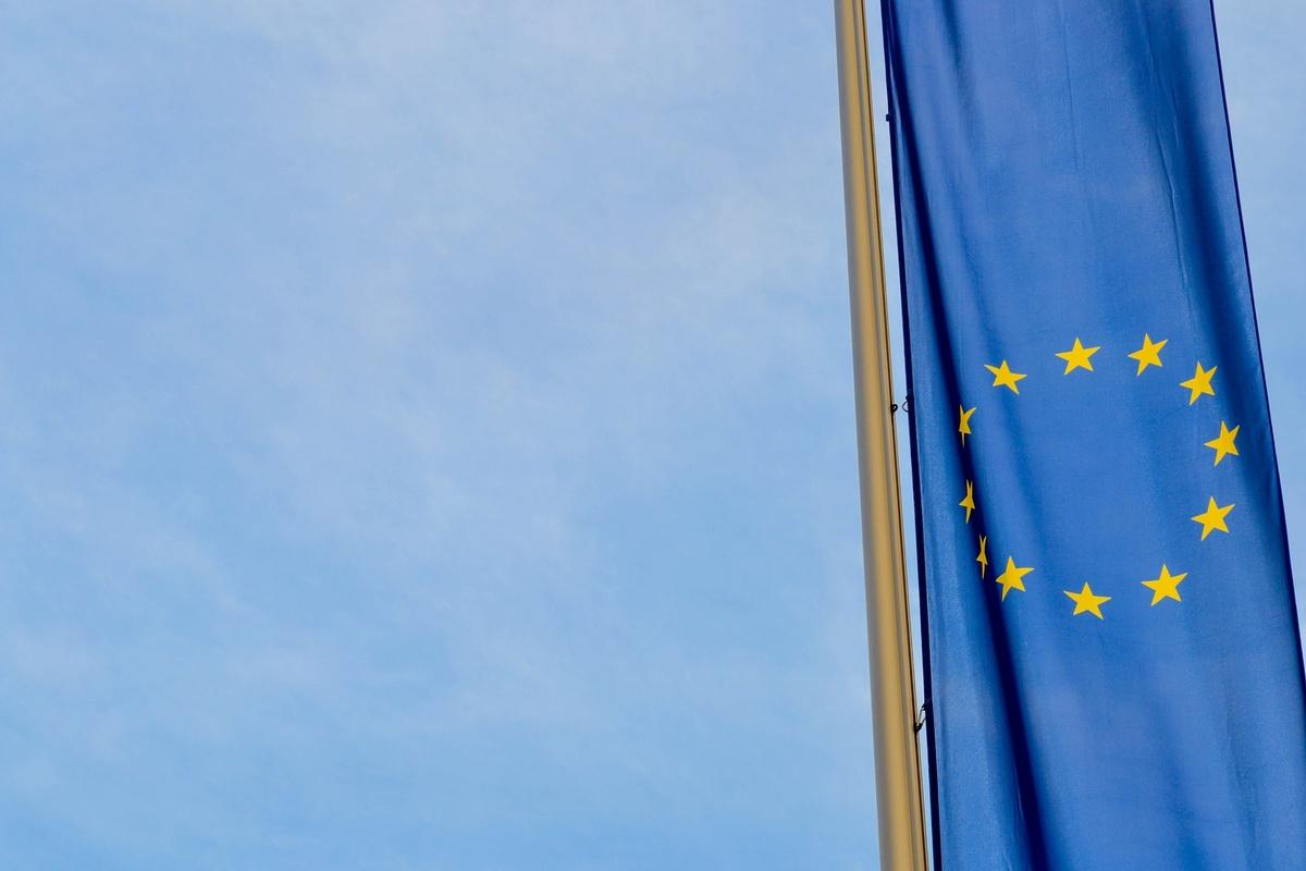 Евросоюз призвал Россию тщательно расследовать смерть славиной - фото 1