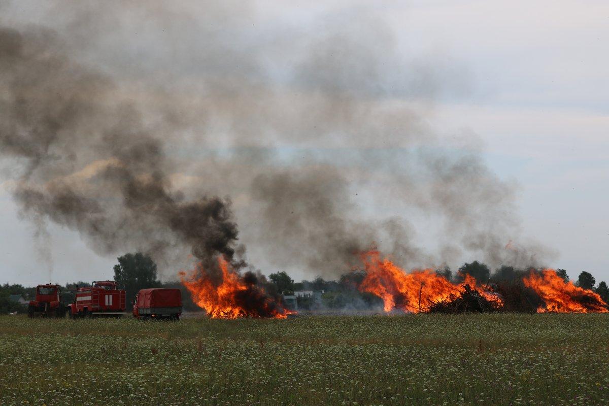 На вертолетах и квадроциклах: пожарные боролись с условным лесным возгоранием под Дзержинском - фото 2