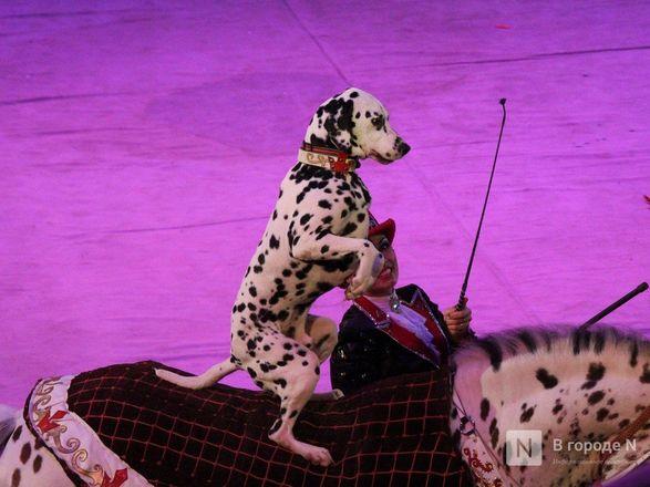 Чудеса «Трансформации» и медвежья кадриль: премьера циркового шоу Гии Эрадзе «БУРЛЕСК» состоялась в Нижнем Новгороде - фото 11