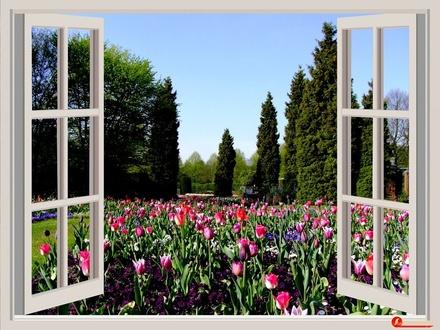 Как правильно настроить окна на «весенний режим», чтобы дома было комфортно