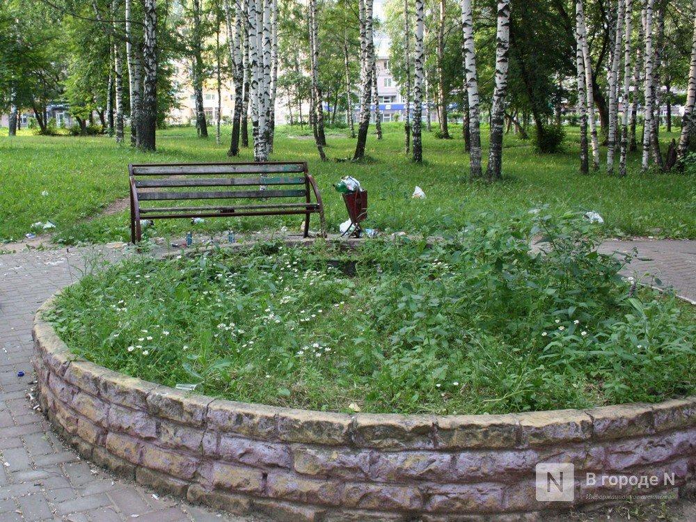Дендрарий и фонтан: что хотят видеть нижегородцы в парке Пушкина - фото 7