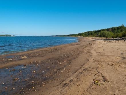 7 опасных болезней, которыми можно заразиться на любом пляже